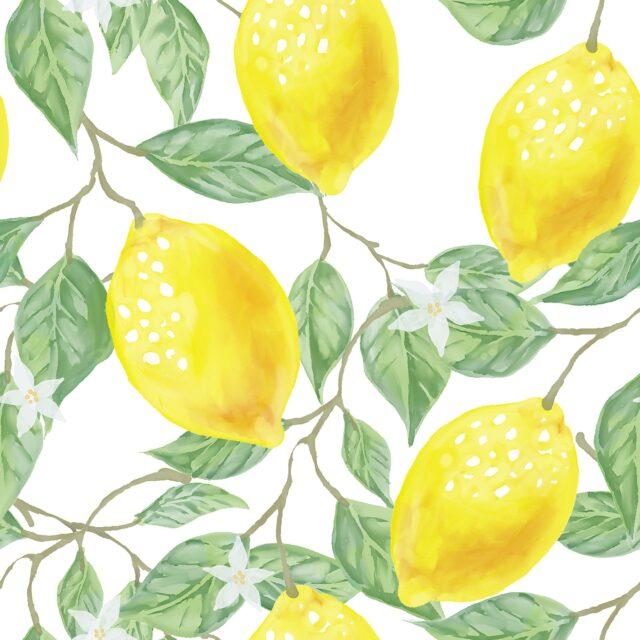 prirodna kozmetika citron POPOKi KRASA